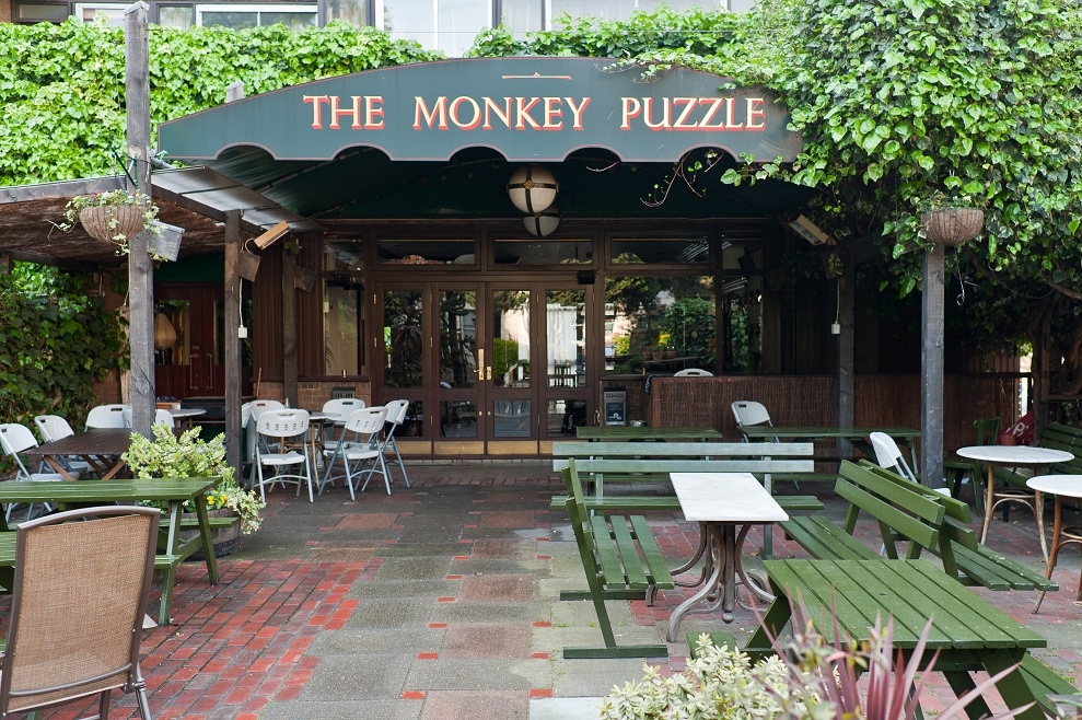 our neighbourhood paddington drink the monkey puzzle