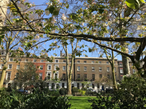 connaught square 2 medium